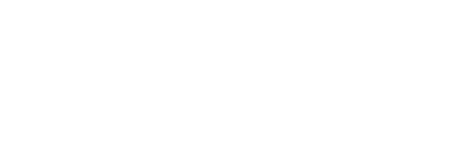 SalesSeek Logo